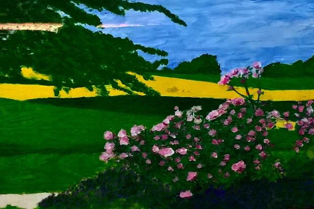 Blühendewiese